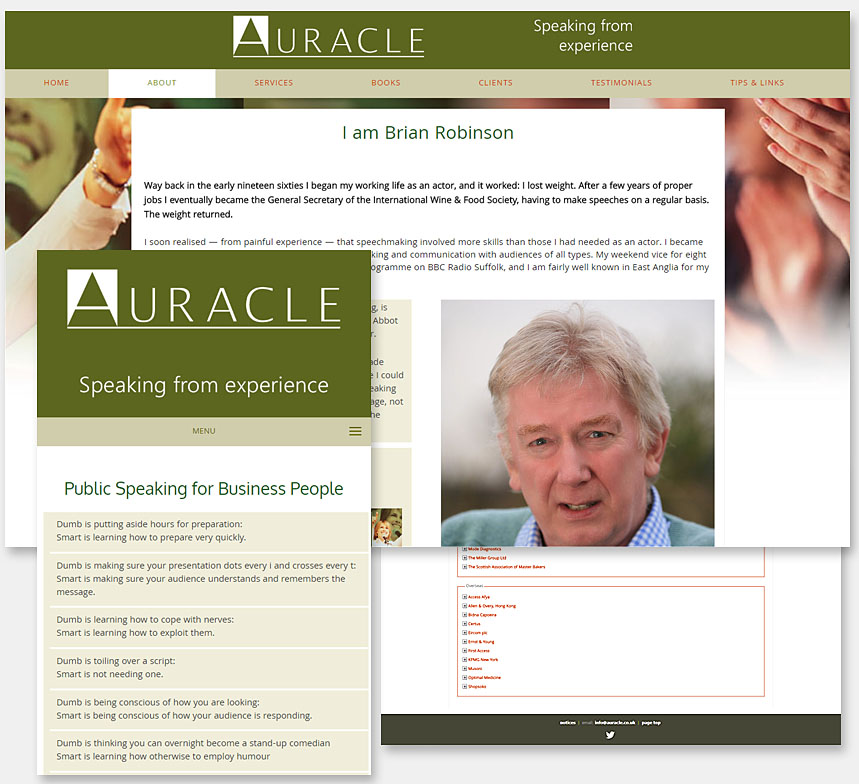 Auracle logo redraw and website design
