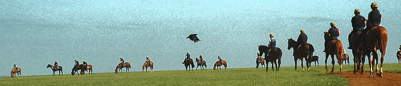 Blue Violet image —Racehorses on Newmarket Heath