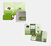 Olive Dental Care wallet and trifold leaflet